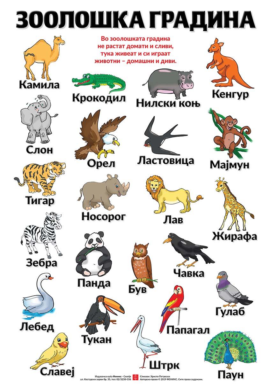Едукативен постер - Зоолошка градина